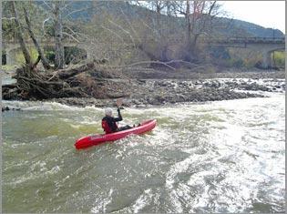 Stoecker ecological santa ynez river steelhead assessment recovery winter kayak survey of the santa ynez river below cachuma dam freerunsca Gallery