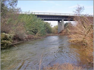 STOECKER ECOLOGICAL - Santa Clara River Steelhead Habitat ...